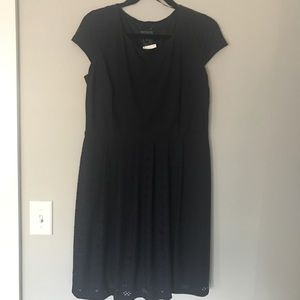NWT EnFocus Studio navy eyelet dress